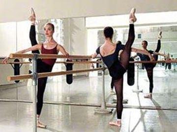 Afbeelding van Vrijstaande balletinstallatie