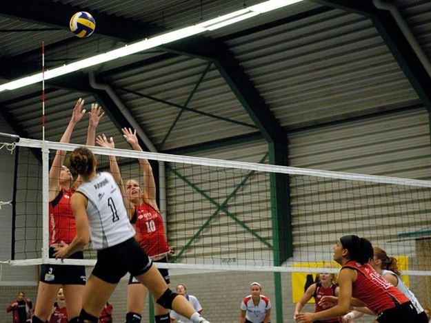 Afbeelding van Volleybalnet FIVB 9,5m - 3mm - kevlar