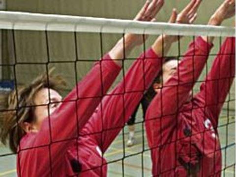 Afbeelding van Volleybalnet standaard