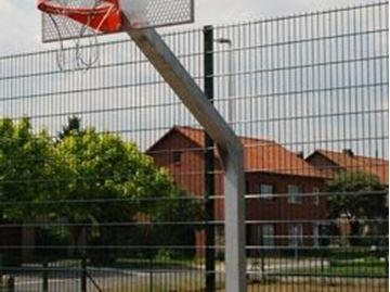 Afbeelding van Basketbal: stalen paal