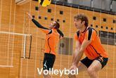 Afbeelding voor categorie Volleybal