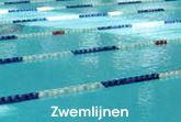 Afbeelding voor categorie Zwemlijnen