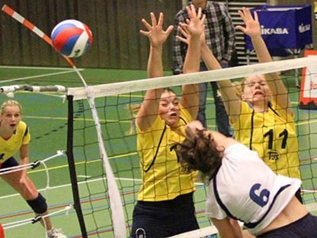 Afbeelding van Toebehoren volleybalnet: Antennes