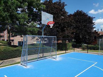 Afbeelding van Combi Kooidoel (met basketbal opzet)