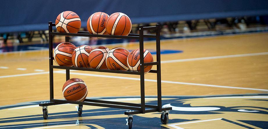 Afbeelding voor categorie Basketballen