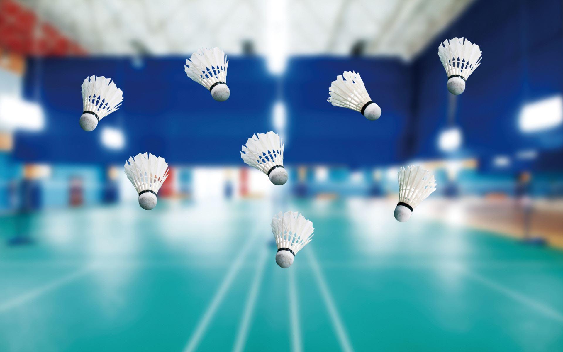 Afbeelding voor categorie Badmintonpalen