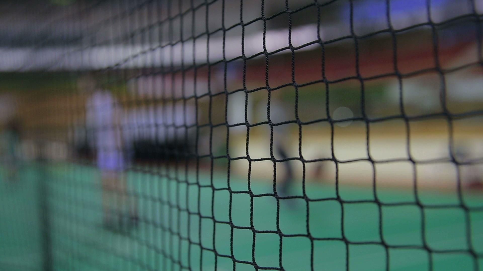 Afbeelding voor categorie Badmintonnetten