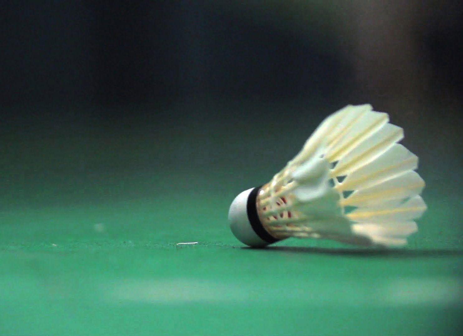 Afbeelding voor categorie Badminton Pluimpjes (Shuttles)