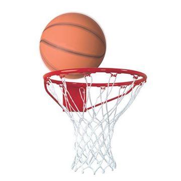 """Afbeelding van Basketbalring """"standaard"""""""